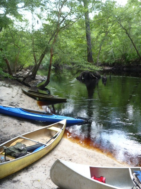 Canoeing the Aucilla: A Red Hills River Steeped in History
