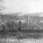 An old photo of a field