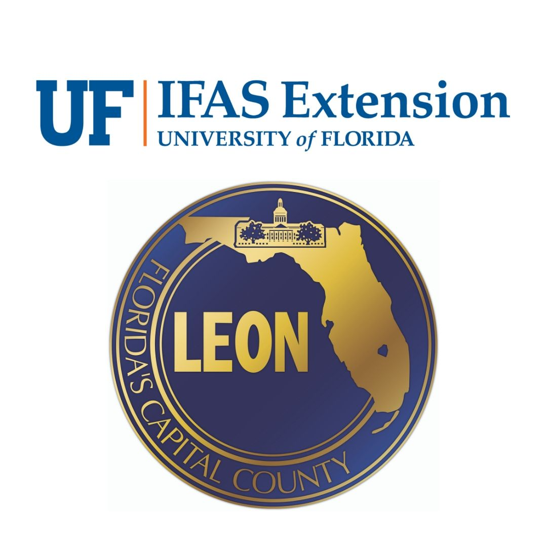 UF/IFAS Extension Office