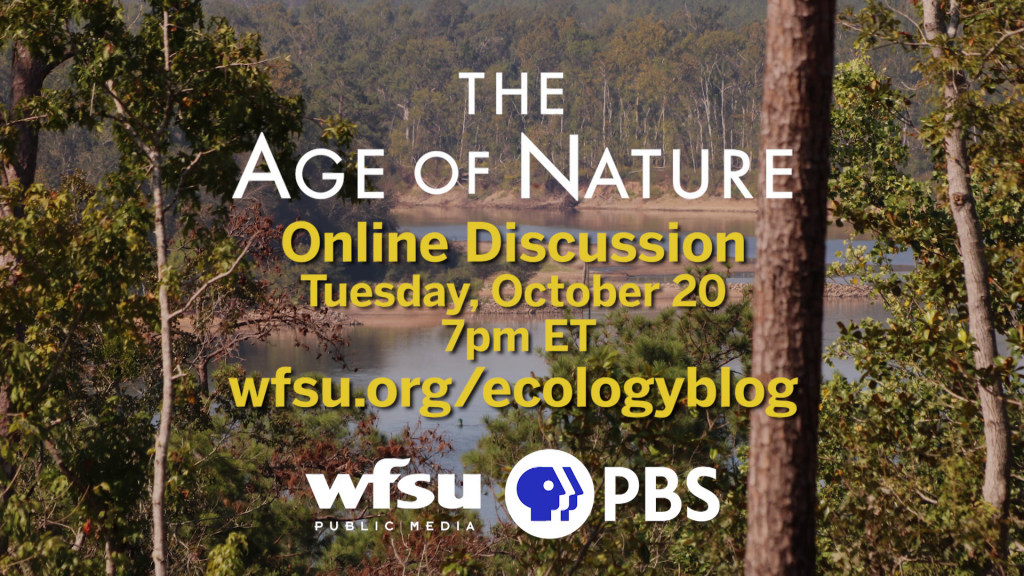 Photo of the Apalachicola River from the bluffs above it. Covered by graphic saying The Age of Nature online discussion takes place on October 20th at 7pm ET. Website to learn more is wfsu.org/ecologyblog.