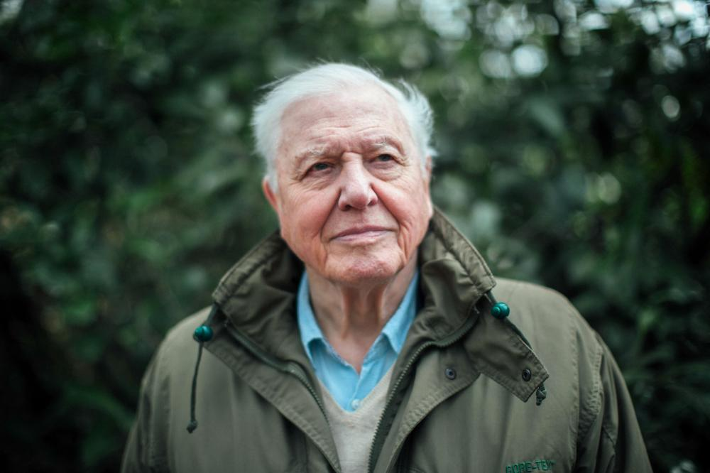 The legendary Sir David Attenborough