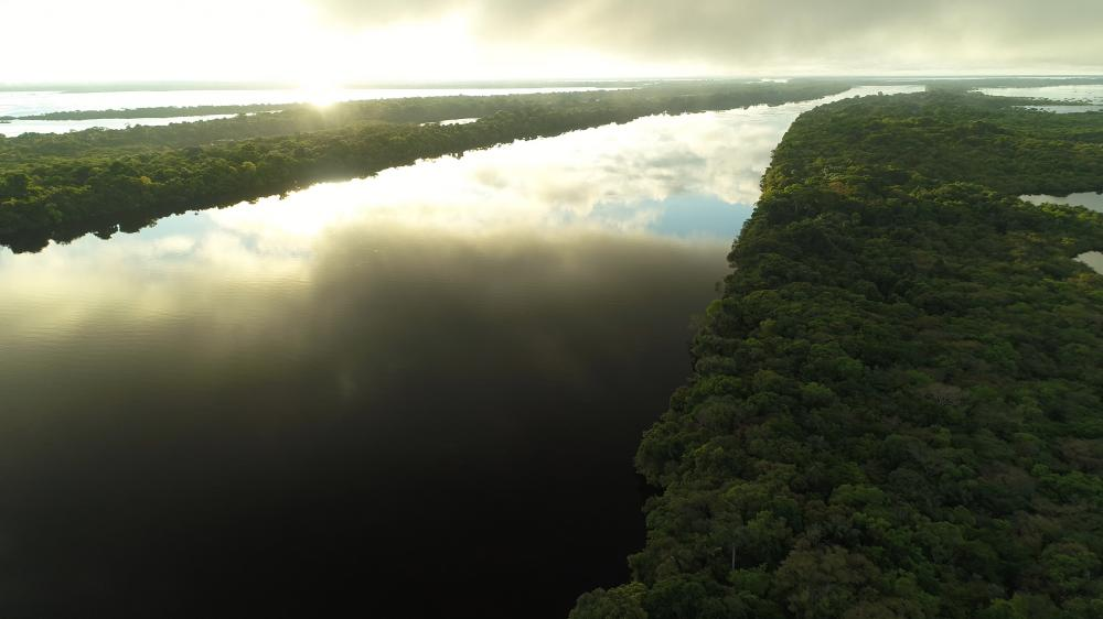 Drone shot of the Amazon River